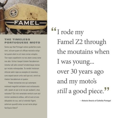 Famel-3